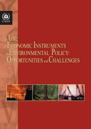 The Use of Economic Instruments in Environmental Policy - UNEP