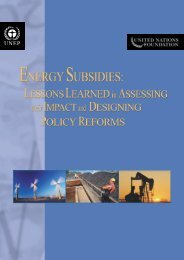 Energy Subsidies: Lessons Learned in Assessing their ... - UNEP