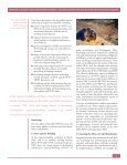 Building synergies - UNEP - Page 3
