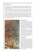 Regional Seas: Strategies for sustainable development - UNEP - Page 4