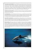 Regional Seas: Strategies for sustainable development - UNEP - Page 6