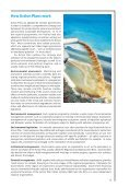 Regional Seas: Strategies for sustainable development - UNEP - Page 7