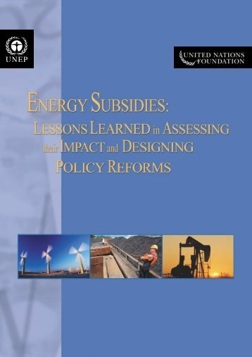 Energy Subsidies: Lessons Learned in Assessing their Impact - UNEP
