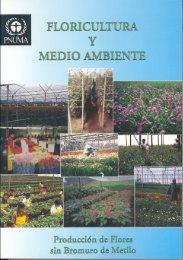 Manual UNIDO español - DTIE