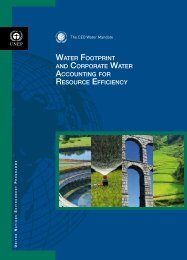 water footprint and corporate water accounting for resource ... - DTIE