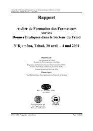 Rapport Atelier de Formation des Formateurs sur les Bonnes ... - DTIE