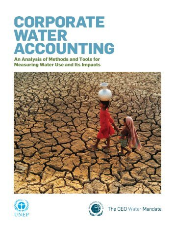 Corporate Water Accounting: An Analysis of Methods and Tools for ...