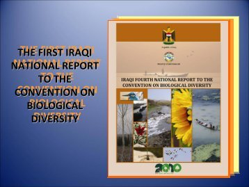4th National Report on Biodiversity (Ms. Anna Bachmann)