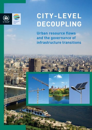 City-Level Decoupling: Urban Resource Flows and the ... - UNEP