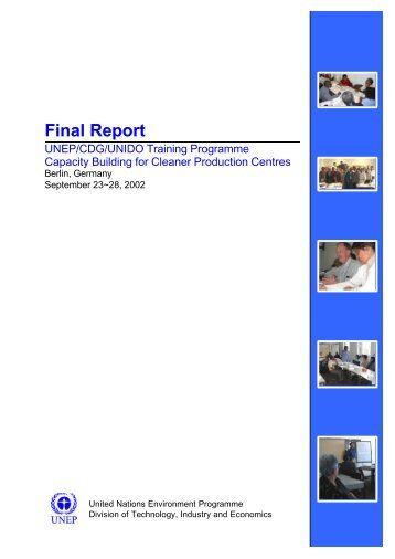 Final Report - International Environmental Technology Centre