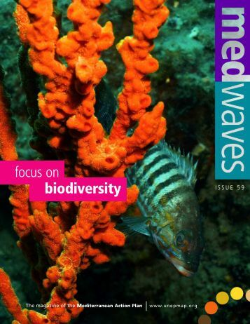 MedWaves Newsletter-Focus on Biodiversity (Issue 59) - UNEP