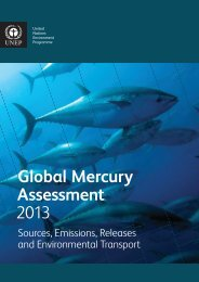 Global Mercury Assessment 2013 - UNEP