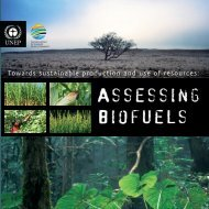 Towards sustainable production and use of resources: - UNEP