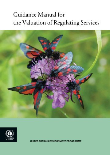 Guidance Manual for the Valuation of Regulating Services - UNEP
