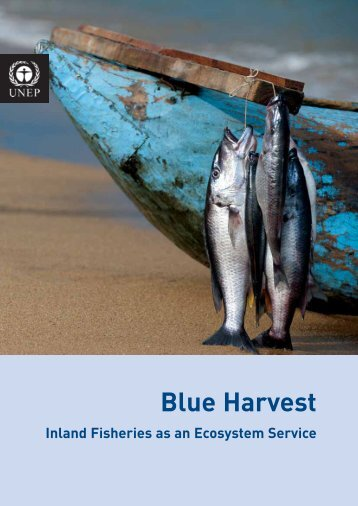 Blue Harvest: Inland Fisheries as an Ecosystem Service - UN-Water