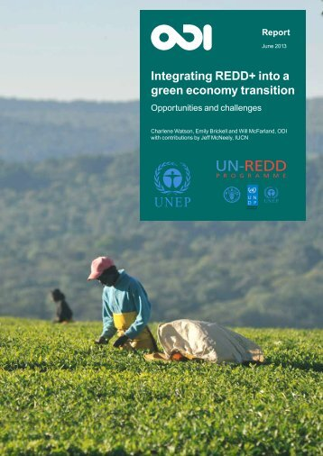 integrate REDD+ into a green economy transition - Unredd.net