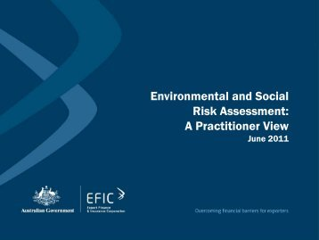 Environmental and Social Risk Management - A Practitioner's View