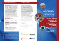 """Curso Virtual """"Análisis de Riesgos Ambientales y Sociales"""" (ARAS)"""