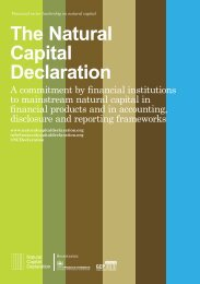 The Natural Capital Declaration - UNEP Finance Initiative