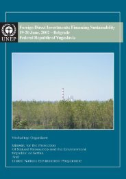 Foreign Direct Investments: Financing Sustainability - Meeting Report