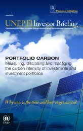 Investor Briefing · PORTFOLIO CARBON - UNEP Finance Initiative