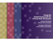 Using the Global Framework for Climate Risk Disclosure