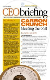 Carbon Crunch: Meeting the Cost - UNEP Finance Initiative