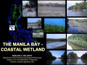 coastal wetland the manila bay - South China Sea Project