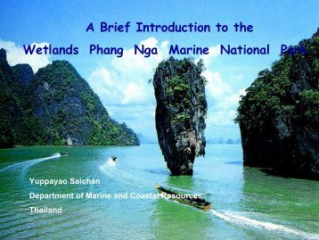 A Brief Introduction to the Wetlands Phang Nga Marine National Park