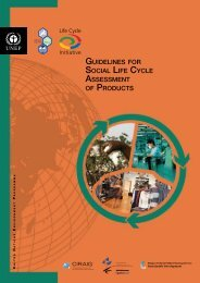 guidelines for social life cycle assessment of products - DTIE