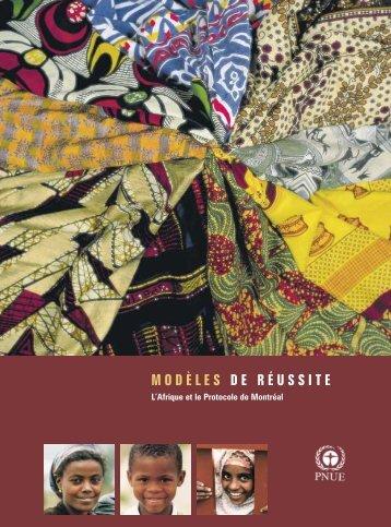 L'Afrique et le Protocole de Montréal - DTIE