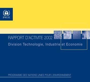 RAPPORT D'ACTIVITE 2002 - DTIE
