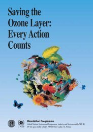 Saving the Ozone Layer: Every Action Counts