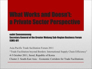 What Works and Doesn't: a Private Sector Perspective - Escap