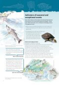 Fish and Turtles - Unesco - Page 6