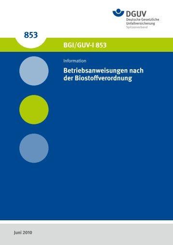 """BGI/GUV-I 853 - """"Publikationen"""" der DGUV"""