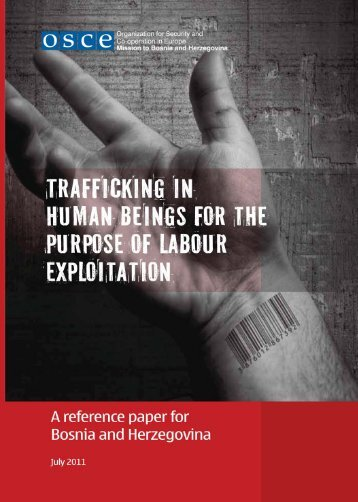 Trafficking in human beings for the purpose of labour exploitation - A ...