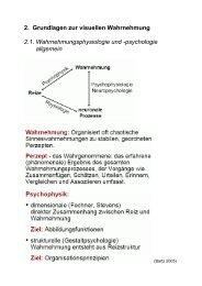 Grundlagen zur visuellen Wahrnehmung (PDF)