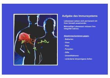 Aufgabe des Immunsystems