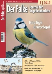 pdf zum Download (2 MB)