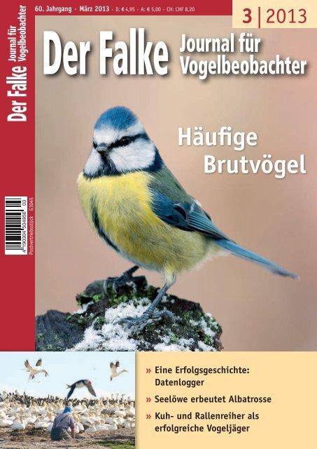 pdf zum Download (2 MB)