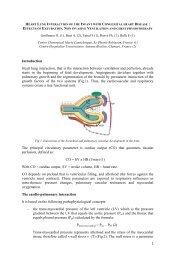 AEPC Heart Lung Interaction Handout