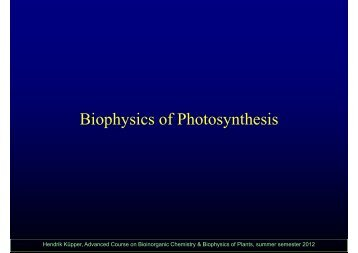 Biophysics of Photosynthesis