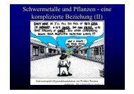 Schwermetalle und Pflanzen - eine komplizierte Beziehung (II)