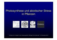 Photosynthese und abiotischer Stress Photosynthese und ...