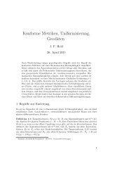 Konforme Metriken, Uniformisierung, Geodäten