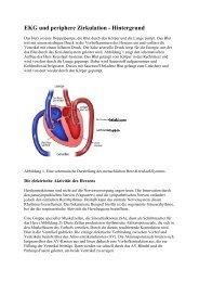 EKG und periphere Zirkulation - Hintergrund