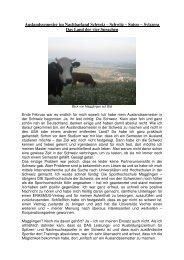 Auslandssemester im Nachbarland Schweiz - Universität Vechta
