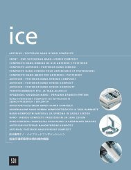 Download the Ice brochure