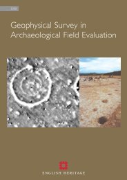 Geophysical Survey in Archaeological Field ... - English Heritage